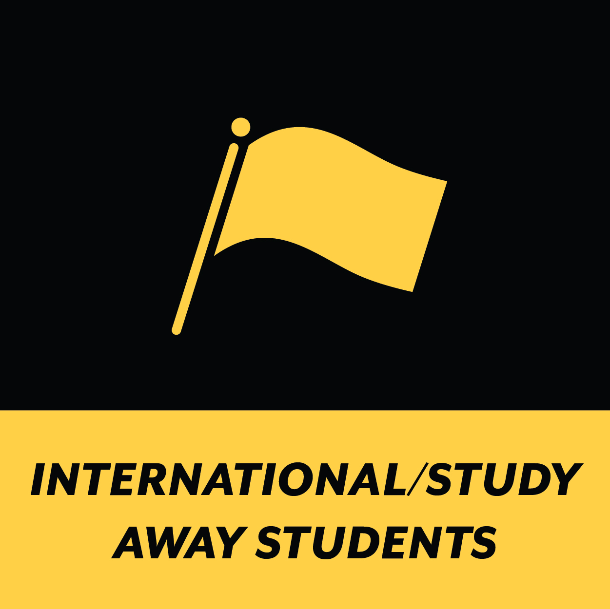 International/Study Away Students