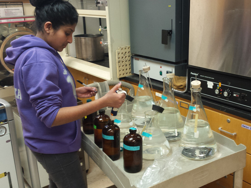 Kanishka Wijesekera preparing algae media